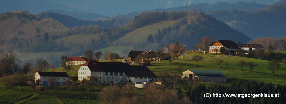 Blick Richtung Ertl, St. Michael - Bauernhäuser St. Georgens