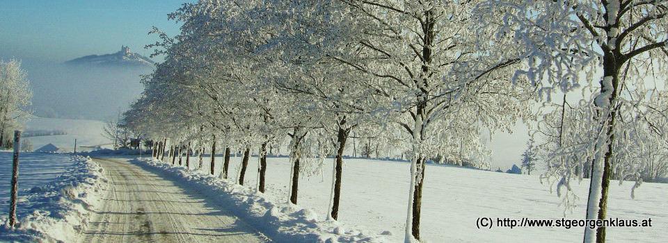 Blick Richtung Sonntagberg im Winter